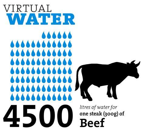 virtualwater_beef.jpg